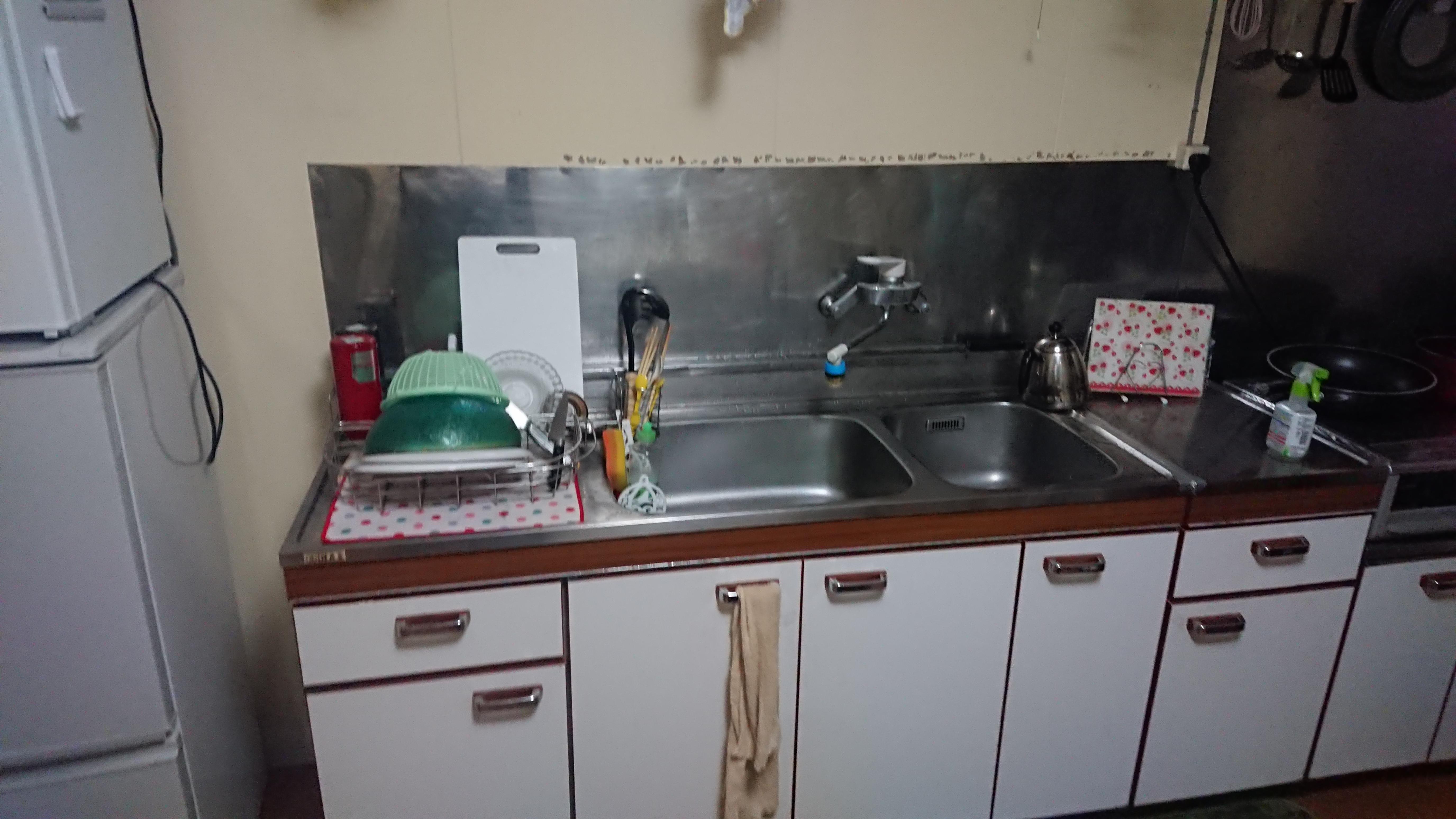 古いキッチンの害虫対策